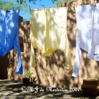 From the Clothes Line: Elegant Survival of Your Clothing